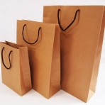 TPG FG 114  Paper Bag[1]