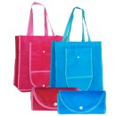 TPG Foldable shopping bag with button