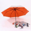 TPG 21″ Foldable UV-Colour Umbrella 8P