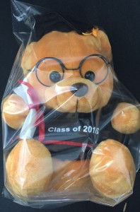 Graduation Bear - 20 cm