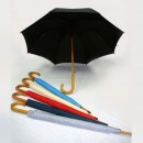 TPG 24″ Full Wood Umbrella 8P