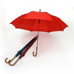 "Corporate Gift Singapore TPG 16"" Cheapest Long Umbrella"