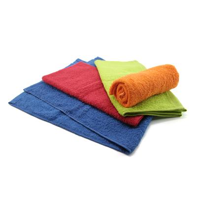 Corporate Gift Singapore TPG Aquarius Sports Towel 71x32cm