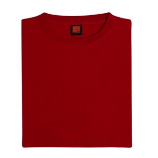 Corporate Gift Singapore TPG High Grade Cotton T-Shirt (Red)